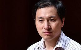 Em bé chỉnh sửa gen ở Trung Quốc: Công bố kết quả điều tra ban đầu