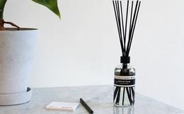 Nước hoa không chỉ giúp tăng thêm nét quyến rũ, lịch lãm mà còn có thể tăng hiệu suất công việc