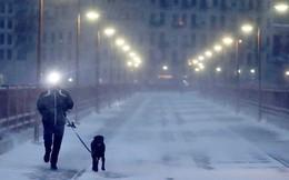 Mỹ: Nhiệt độ giảm sâu khiến nhiều trường học phải đóng cửa