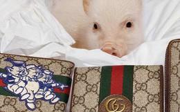 Các thương hiệu xa xỉ ra mắt một loạt các món đồ hình chú lợn để kỷ niệm dịp Tết Nguyên đán 2019