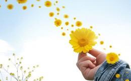 """Luôn cảm thấy người khác thành công hơn, hạnh phúc hơn do bạn bị 5 """"bẫy"""" tâm lý này bủa vây: Buông bỏ sớm để năm mới """"nở hoa"""", sự nghiệp thăng tiến"""