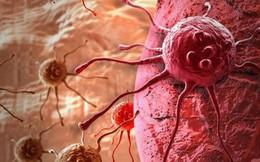 Liệu pháp chữa ung thư giá rẻ đang áp dụng tại VN: Chuyên gia khẳng định kết quả rất tốt