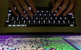Bkav: Hàng trăm cơ quan, tổ chức tại Việt Nam bị dính mã độc tống tiền W32.WeakPass