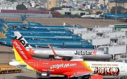 Các hãng hàng không Việt Nam đã chuẩn bị gì cho đường bay thẳng đến Mỹ?