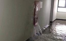 Họng cứu hoả bục gây ngập tầng 21, cư dân An Bình City lo sợ, bức xúc