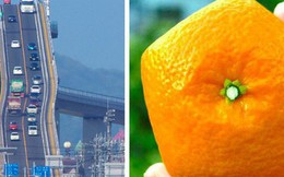 15 phát minh đỉnh cao ở Nhật Bản khiến bạn nhận ra chúng ta và họ dường như cách nhau cả thế kỷ
