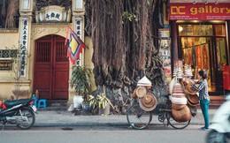 Góc tự hào: Việt Nam được tạp chí Forbes bình chọn là 1 trong 14 điểm đến của năm 2019