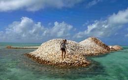 Đây là hòn đảo nhân tạo có một không hai khi toàn bộ đảo được làm từ vỏ ốc xà cừ chất thành đống