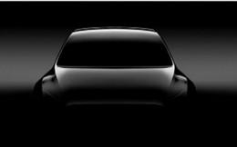 Tesla sẽ trình làng mẫu SUV cỡ nhỏ Model Y vào ngày 14/3, xe bán tải chạy điện ra mắt cuối năm nay