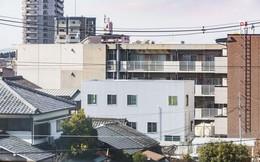 Ngôi nhà ngoại ô vô cùng đặc biệt vì không có cửa và phòng riêng ở Nhật Bản