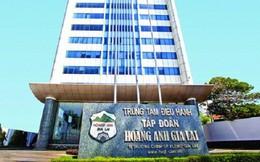 Tập đoàn Hoàng Anh Gia Lai bị truy thu gần 10 tỷ đồng tiền thuế
