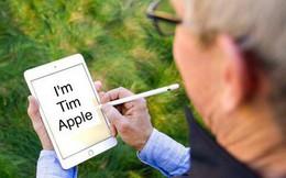Tim Cook vừa khoe iPad mini 5 và Apple Pencil, dân tình đã kịp chế meme