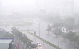 Năm 2019 sẽ có 4-5 cơn bão ảnh hưởng trực tiếp đến Việt Nam