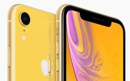 iPhone 2019 sẽ copy Samsung, Huawei và lại gây thất vọng, vì điều đó hoàn toàn nằm trong tính toán của Tim Cook