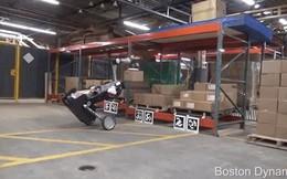 Xem robot chim đà điểu sắp xếp hàng hoá hoàn hảo thế này, nhân viên nhà kho chuẩn bị thất nghiệp đi là vừa