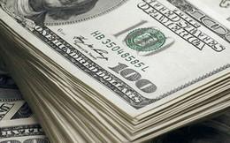 Vận chuyển trái phép 40.000 USD, bị tịch thu 35.000 USD, đóng phạt 1 tỉ đồng