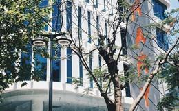 Một trường Đại học ở Việt Nam lọt top 200 trường ảnh hưởng nhất đến sự phát triển Kinh tế-Xã hội của thế giới