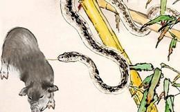 3 cặp con giáp tương xung, lấy nhau khó ấm êm, gia đạo lục đục của cải tiêu tán (P2)