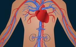 3 thói quen là nguyên nhân dẫn đến bệnh mãn tính: Biến người khỏe thành người có bệnh