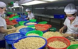 Chuyên gia châu Âu 'mách nước' cho nông sản Việt
