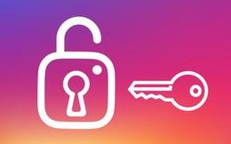 Instagram bị người dùng tố hiển thị Story của người lạ