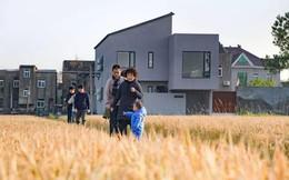 Cặp vợ chồng trẻ quyết định bỏ phố về quê xây nhà sống bình yên bên đồng lúa cùng bố mẹ hai bên