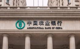 """Không phải Mỹ, đây mới là """"quê hương"""" của các ngân hàng lớn nhất thế giới"""