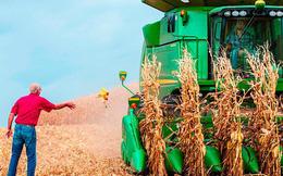 NYTimes: Cuộc chiến thương mại của Trump là nỗi kinh hoàng với nông dân Mỹ dù họ đưa ông ta vào Nhà Trắng