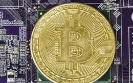 Giá Bitcoin tăng 12% tuần này