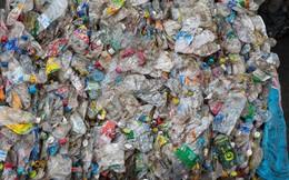 """Giải quyết khủng hoảng rác nhựa bằng cách... chế ra một loại nhựa khác: Tại sao ý tưởng """"IQ vô cực"""" này được đánh giá cực cao?"""