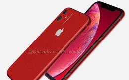 iPhone XR (2019) sẽ có thay đổi về màu sắc, camera kép phía sau