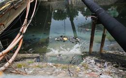 Chỉ 3 ngày làm 'bay' mùi hôi sông Tô Lịch: Công nghệ Nhật sẽ đặt dưới đáy sông là gì?
