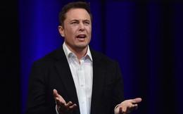 Thêm một giám đốc cấp cao rời Tesla