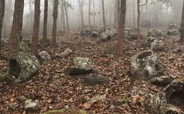 """Bí ẩn hàng trăm chiếc """"chum đá của người chết"""" được tìm thấy tại Lào: 2000 năm chưa có lời giải"""