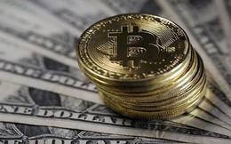 Bitcoin lùi về 7.000 USD để sớm phá mốc 20.000 USD?