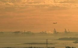 Lớp khói dày nguy hại bao phủ, toàn TP Sydney bị ô nhiễm nghiêm trọng