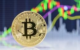 Bitcoin đang bị thổi phồng quá mức?