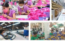 """Vì sao doanh nghiệp tư nhân Việt Nam hay """"chết yểu""""?"""