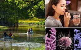 """Tin buồn ngày Môi trường thế giới: 2/3 các dòng sông toàn cầu đang """"nhiễm độc"""" thuốc kháng sinh, có nơi cao gấp 300 lần mức tiêu chuẩn"""