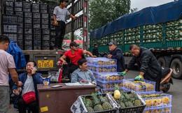 Chiến tranh thương mại, suy thoái kinh tế, giá cả leo thang: Thủ tướng TQ sốc vì biết giá táo ở chợ