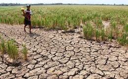 World Bank: Trên thế giới, một mét khối nước tạo ra 19,42 USD giá trị gia tăng, ở Việt Nam chỉ tạo ra 2,37 USD