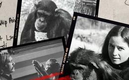 Câu chuyện đau lòng về Lucy, con tinh tinh vẫn tưởng mình là người