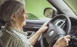 Nhật Bản sẽ cấp phép bằng lái xe riêng cho người cao tuổi