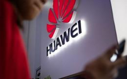 Huawei hủy ra mắt sản phẩm mới do lệnh trừng phạt của Mỹ