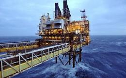 Sụt giảm 4%, giá dầu Mỹ về mốc 51 USD/thùng