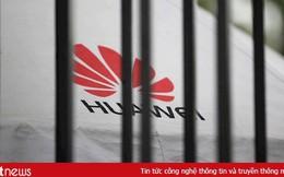 """Chủ tịch Hội đồng kinh doanh Mỹ - Trung: Ông Trump muốn """"giết"""" Huawei"""