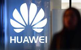 Nhậm Chính Phi: Huawei bán mảng cáp ngầm vì không liên quan đến hoạt động chính, sẽ không sa thải nhân viên hàng loạt