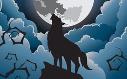 Sói hú dưới trăng: Hiện tượng hư cấu trong phim kinh dị hay câu chuyện có thật?