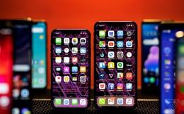 """Smartphone cao cấp sụt giảm, Apple """"góp công"""" lớn khi đang chiếm gần một nửa thị phần"""