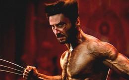 Sếp Marvel đang ra sức thuyết phục Keanu Reeves gia nhập MCU
